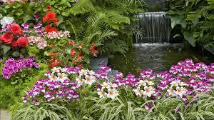 free flower garden wallpapers. Plain Garden Popular Inside Free Flower Garden Wallpapers
