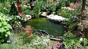 Pond Design Pond Design And Build Almost Perfect Landscaping