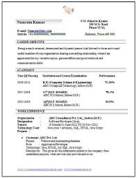 Professional Curriculum Vitae   Resume Template Sample Template of      Computer Engineering Resume Format for Freshers