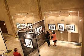 display lighting in an art gallery illuminating pictures