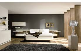 what color to paint furniture. Amazing Paint Color What To Furniture