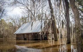 photo essay flooding in uncertain texas flooding in uncertain texas on caddo lake in 2016