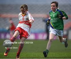 The Go Games Provincial Days in partnership with ... - Sportsfile