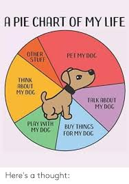 A Pie Chart Of My Life Other Stuff Pet My Dog Think About My