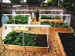 gallery of images small vegetable garden design ideas and kitchen