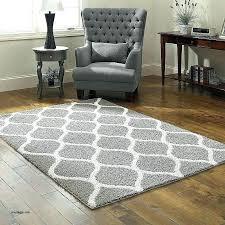 area rugs under 100 myinfinitenow com