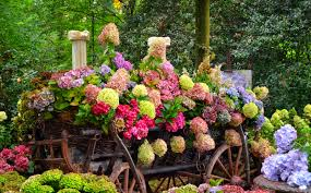 Small Picture Flowers Flowers Trees Lovely Beautiful Garden Freshness Cart