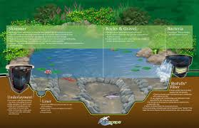 Small Picture Garden Beautiful Garden Ponds Ideas With Waterfall Design