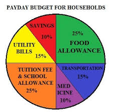 Weekly Allowance Chart What Is A Pie Chart Selective School Exam