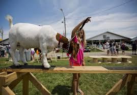 Elkhart County 4 H Fair Animals Exhibitors Test Their