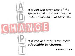 Adapt-Change Image