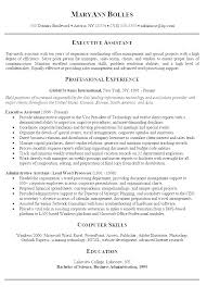 Summary In Resume Example Sample Career Summary For Resume Example