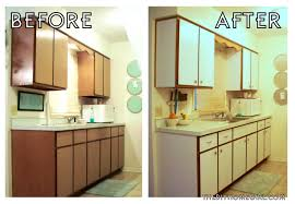 apartment kitchen decorating ideas on a budget. Lovable Apartment Kitchen Decorating Ideas On A Budget With Apartments Stunning About Rental E