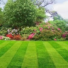 Image result for lawn and garden company