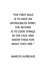 Stoicism Quotes Amazing Stoic Philosophy Quote Untroubled Spirit' Framed Print By