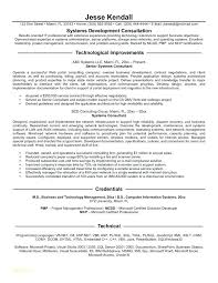 Technology Consultant Cover Letter Resume Sample Source