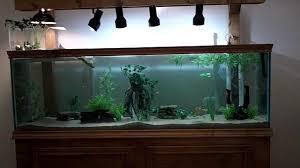 125 Gallon Aquarium Light Hood 125 Gallon Diy Turtle Community Tank Youtube
