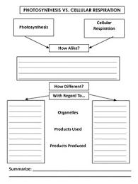 Cellular Respiration And Photosynthesis Venn Diagram