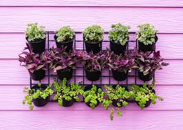 Small Picture Think Green 20 Vertical Garden Ideas