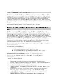 4 - Business Process Management Resume