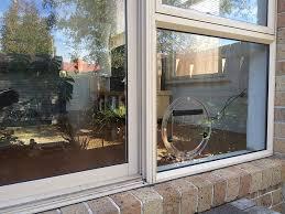 cat flaps in patio doors