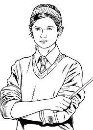 Harry potter 1, 2, 3, 4 e 5 Pin Su Canvas Ideas