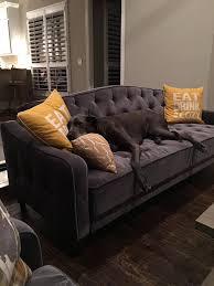 urban outfitter furniture. velvet sleeper sofa ava tufted urban outfitter furniture