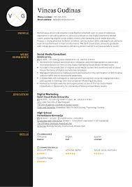 Manager, digital & social media resume examples & samples. Social Media Consultant Resume Example Kickresume
