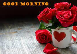 Red Rose Romantic Beautiful Lady Good ...