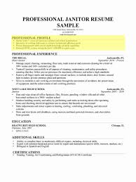 Write Resume Resume Career Summary Examples New How to Write A Professional 21