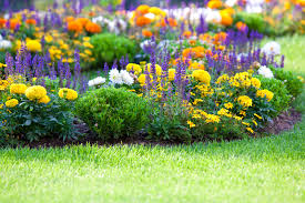 Image result for images of spring gardens