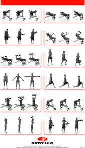 Bowflex Ultimate 2 Exercise Wall Chart Bowflex Ultimate 2 Exercise Wall Chart Home Gym