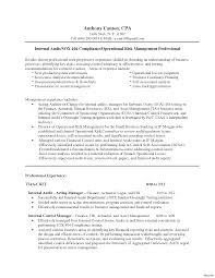 Auditor Resume Sample Night Auditor Resume Sample Template Responsibilities For 52