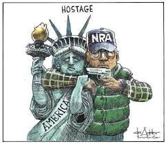 Image result for NRA cartoon