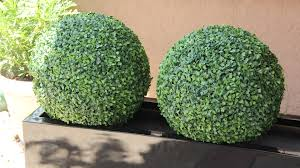 Decorative Boxwood Balls Check Out Our Boxwood Balls On Display In Our New Fiberglass 98