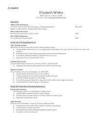 Musician Resume Example Extraordinary Musical Resume Template Musician Resume Example Music Industry