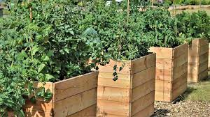 commercial raised bed farming a full