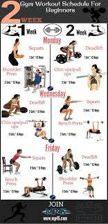 Gym Workout Chart Gym Workout Schedule For Beginners