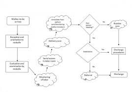Delivery Flow Chart Labor And Delivery Flowchart Usaid Assist Project