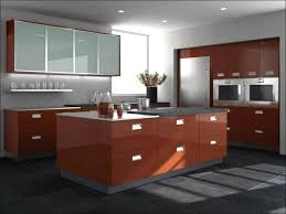 Plastic Kitchen Cabinet Mesmerizing Plastic Kitchen Cabinet Doors House Interior Design Urspaceclub