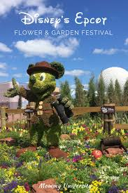 disney s epcot flower and garden show