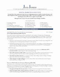 Resume Format For Accounts Executive Fresh Sample Digital Marketing