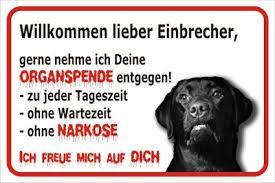 Schild Vorsicht Labrador Willkommen Lieber Einbrecher 20x30cm