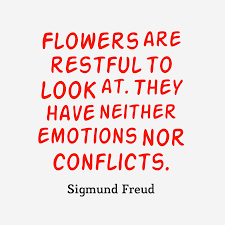 best sigmund freud quotes images sigmund freud qupte about flowers