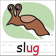 Image result for slug images clip art