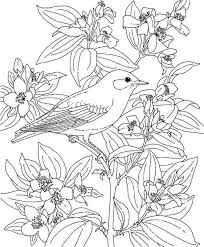 Small Picture Hawaiian Flower Coloring Pages fablesfromthefriendscom