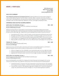 Executive Summary In Resume Cool Executive Summary Templates Custom Monthly Status Report Template