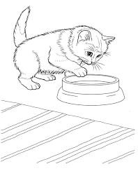 free kitten coloring pages - 100 images - kitten coloring pages ...