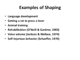 behavior modification shaping examples
