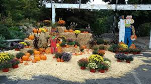 hickory hollow nursery and garden center 713 ny 17 tuxedo park
